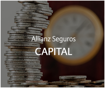 Allianz Ahorro e Inversión